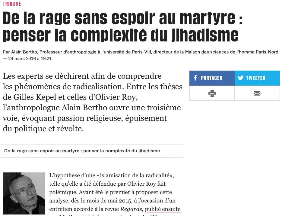 De la rage sans espoir au martyre : penser la complexité du jihadisme